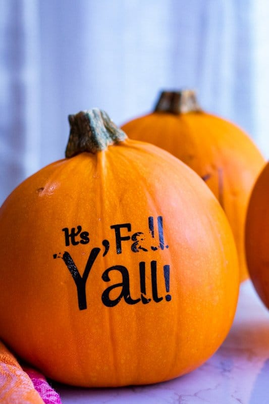 """Small orange pie pumpkins with writing on one of them saying """"It's Fall Y'all!"""